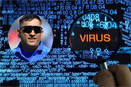 survey most of the virus spreading on dhoni s name on the internet