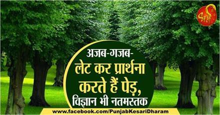 dharmik stathan