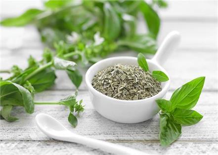12 basil health and beauty benefits