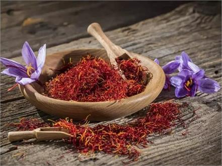 saffron will be the treatment of epilepsy know more benefits