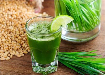 10 health benefits of drinking wheat grass juice