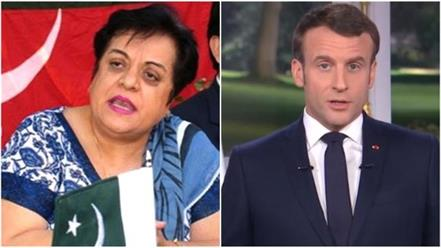 pak human rights minister shirin mazari apologizes to france