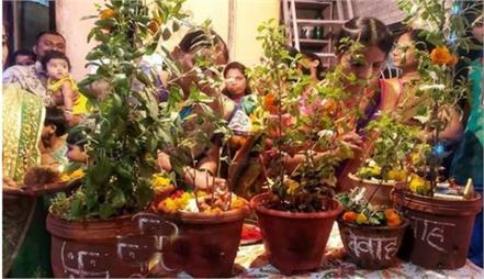 tulsi vivah pujan vidhi in hindi