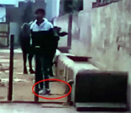young man beaten with a baton by tying leg with sangal