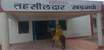 know why the young man arrived on a mare in the tehsil