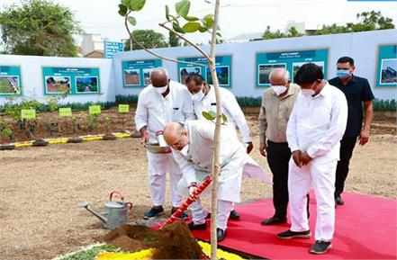amit shah planted in ahmedabad