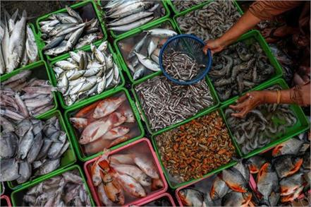 pakistan s fish export hit by chinese ban