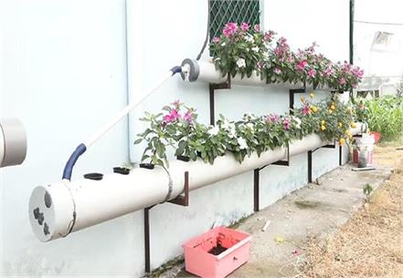 now flowers will be able to grow on the roof and walls of house