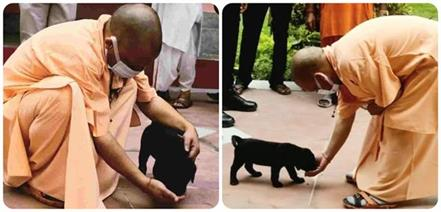 seeing cm yogi his gullu came running fast pictures on social media