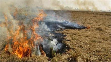 stubble will no longer spread pollution will create manure