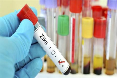29 people infected with zika virus in rajasthan