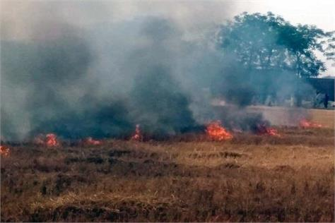 8 acres of burning fire from fire with firecrackers