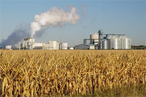 wheat in ethanol production rice is not practical