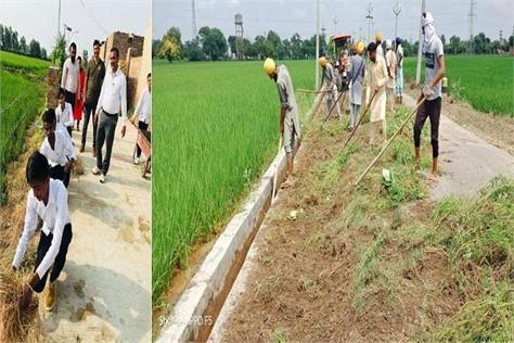 people associated village campaign punjab government punjab news