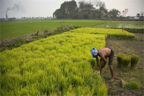 nabard report rapid earnings in agriculture sector