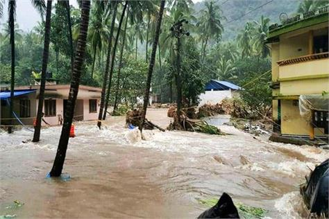 rooted agriculture in kerala floods
