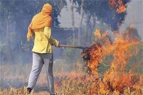 problem of burning straw one has to pay attention to the economics of farmers