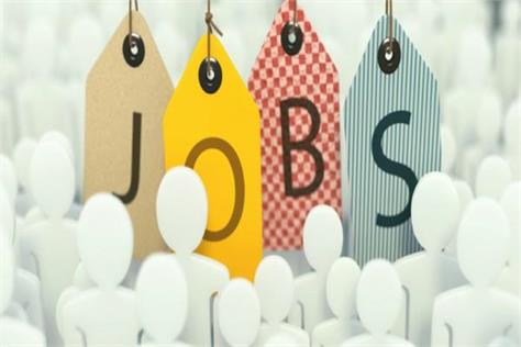job salary candidate icf