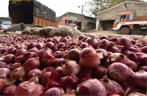 nafed tender for supply of 15 000 tonnes of imported red onion