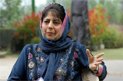 accused of mehbooba mufti said bjp rigged smc ddc elections