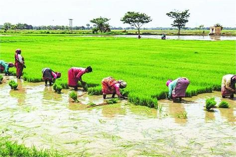farmers will get exemption for these works in lockdown