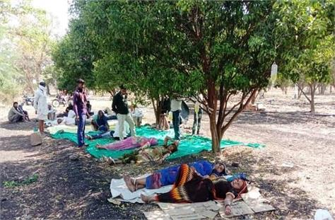 scorching doctors under trees are treating corona patients