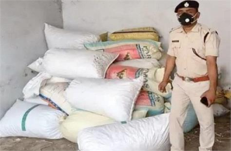 police recovered 16 quintal opium doda in chatra
